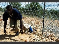 un-clandestin-zimbabween-passe-la-frontiere-pres-de-musina